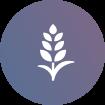 icon-agribusiness